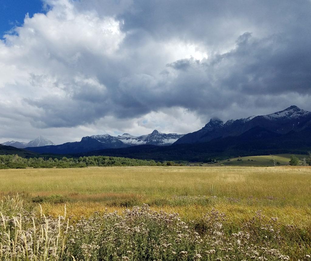 Alpine Field of Dreams